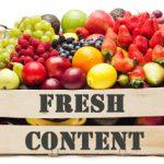 آموزش تولید محتوا جدید برای سایت